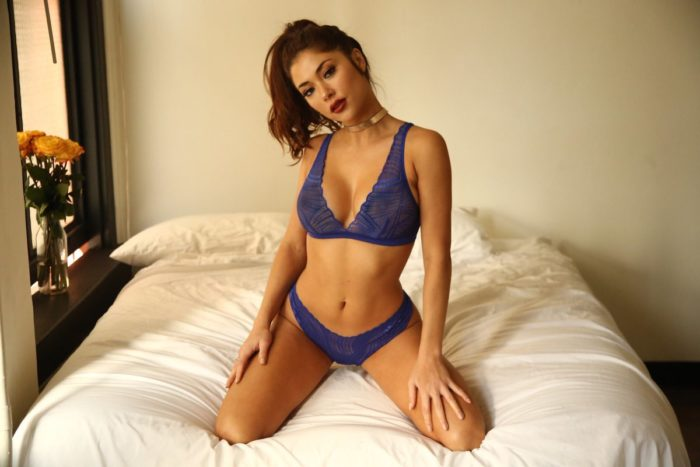 Arianny Celeste in lingerie with see through nips