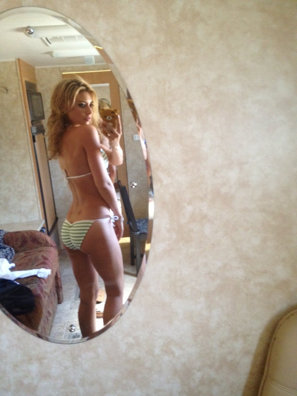Aly Michalka topless pic